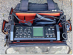 Roland R-88 - 8 +2 Channel Field Recorder.