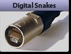 Digital Snakes