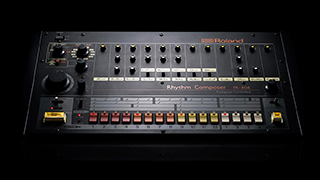 808DAY