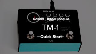 TM-1 Quick Start