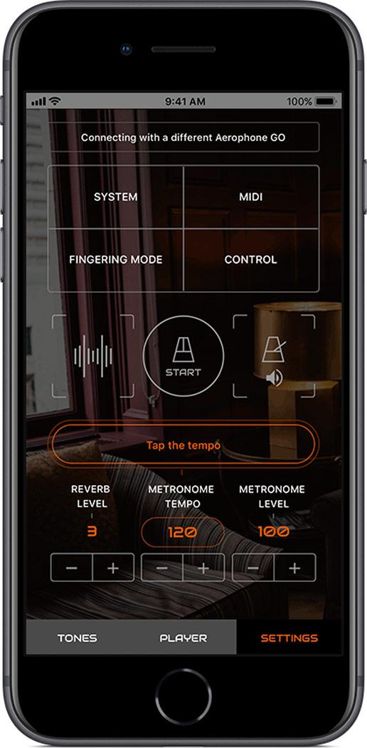 Roland Aerophone GO Plus