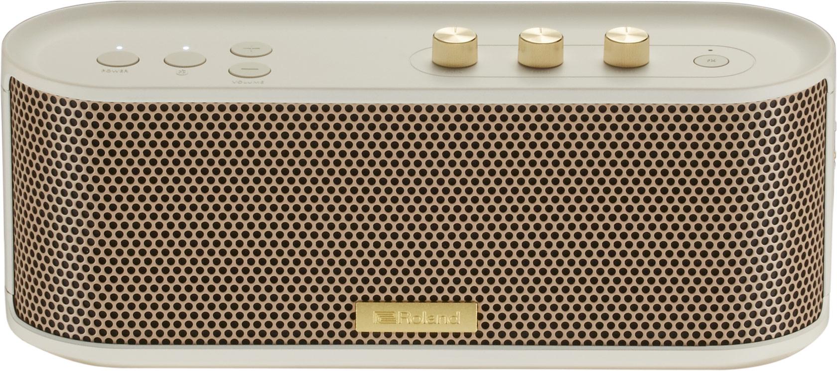 Roland - BTM-1 | Bluetooth Speaker with Instrument Input