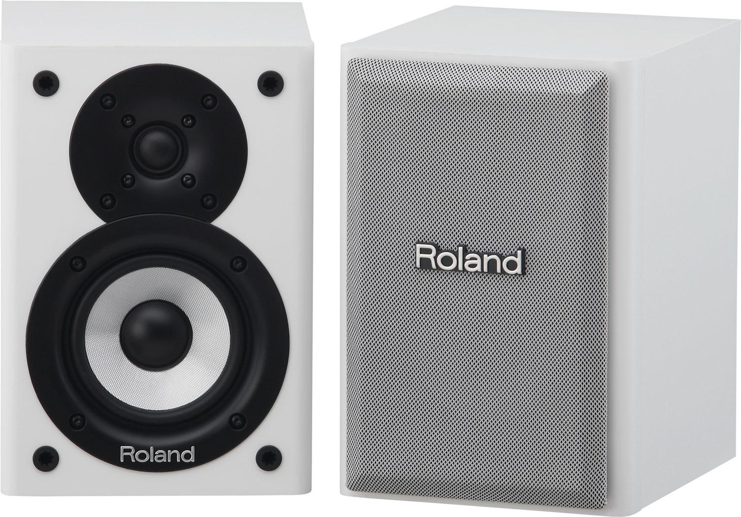 Verbazingwekkend Roland - CM-110 | CUBE Monitor PN-56