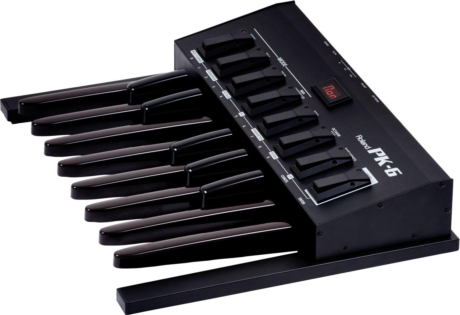 Roland - PK-6 | Dynamic MIDI Pedal