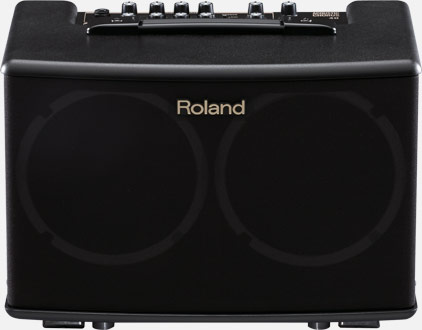 AC-40 | Acoustic Chorus Guitar Amplifier - Roland