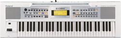E-09 (Vit)