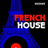SDZ065 French House