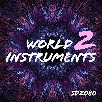 SDZ080 World Instruments 2