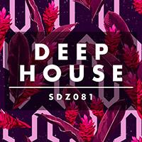 SDZ081 Deep House