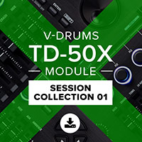 TD-50X Session Collection 01