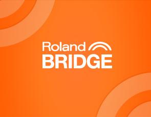 Roland Bridge